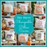 No Sew Changeable Pillow Covers