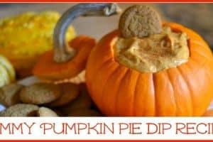 Recipe: Pumpkin Pie Dip