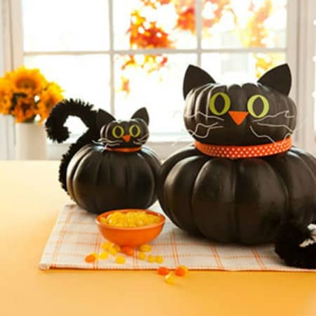 Non-scary cat pumpkins