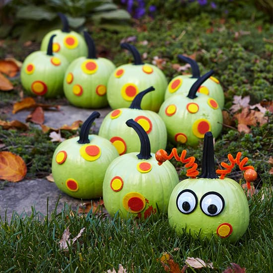 Non-scary caterpillar pumpkins