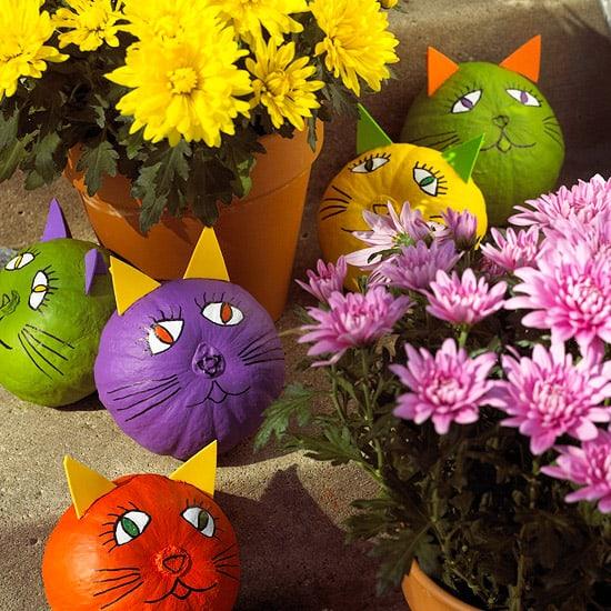 non-scary pumpkins