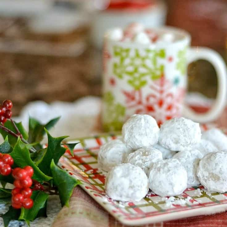 Christmas Cookie Recipe - Pecan Meltaway Balls