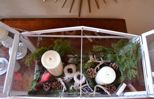 Worthing Court: View from the top of the finished terrarium vignette