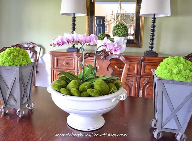 A spring centerpiece on a dining room table consisting of an orchid filled urn flanked by reindeer moss covered styrofoam balls in zinc planters