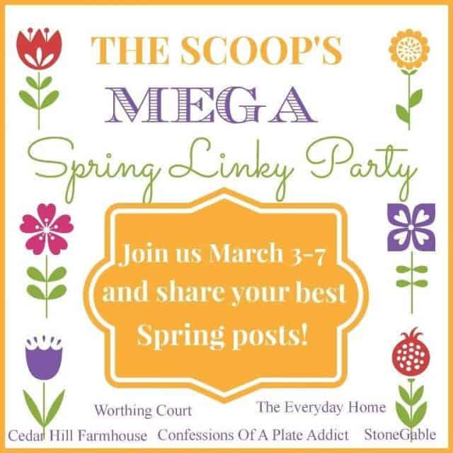 Looking for Spring inspiration or have a Spring project? You'll want to check out this link party that will be hosted by over 30 blogs!