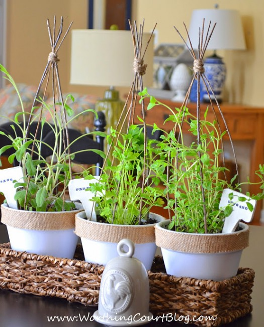 a pretty mini indoor herb garden and diy plant markers  worthing, Natural flower