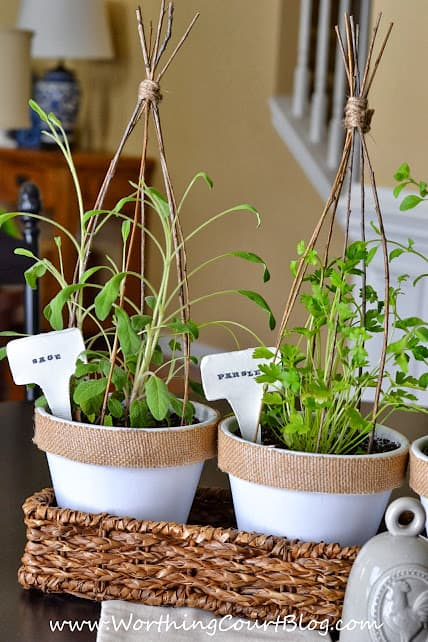 Tutorial for easy to make plant markers :: WorthingCourtBlog.com