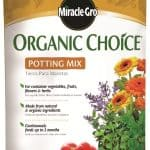 Growing Herbs In Miracle-Gro Organic Mix