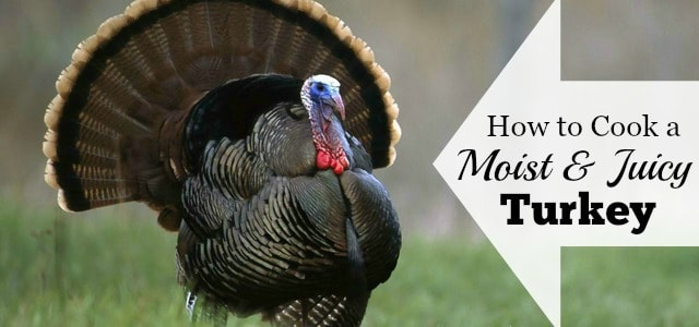 The easy, fool proof way to cook a moist and delicious turkey