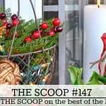 The Scoop Link Party #147