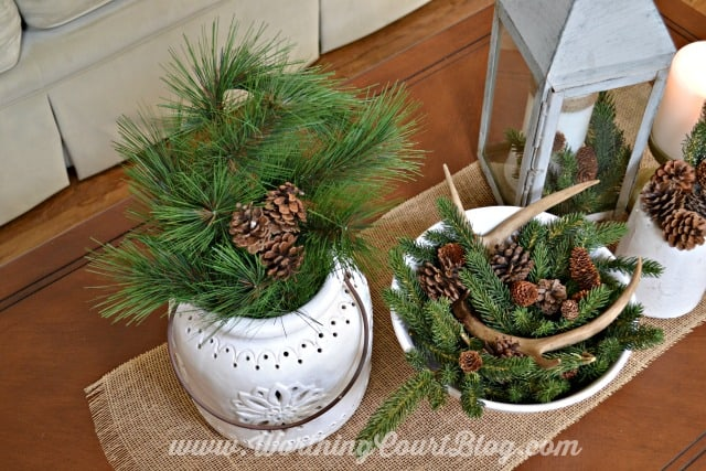 There is pine cones, faux antlers and candles on the coffee table.