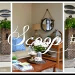 The Scoop Link Party #174