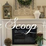 The Scoop Link Party #180
