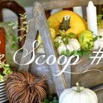 The Scoop Link Party #186