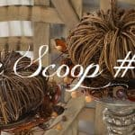 The Scoop Link Party #189 – Fall Recipes, Pumpkins, Crafts And More!
