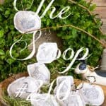 The Scoop Link Party #210