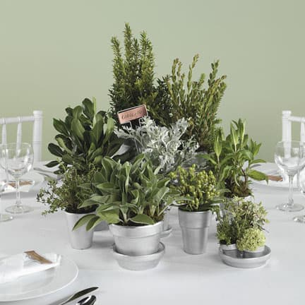 Kill two birds with one stone by grouping pots of herbs together to create a pretty table centerpiece.