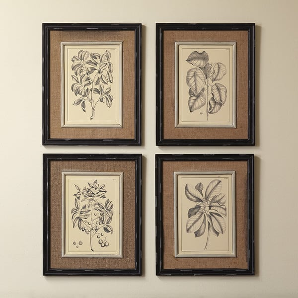 Botanic Prints From Birchlane