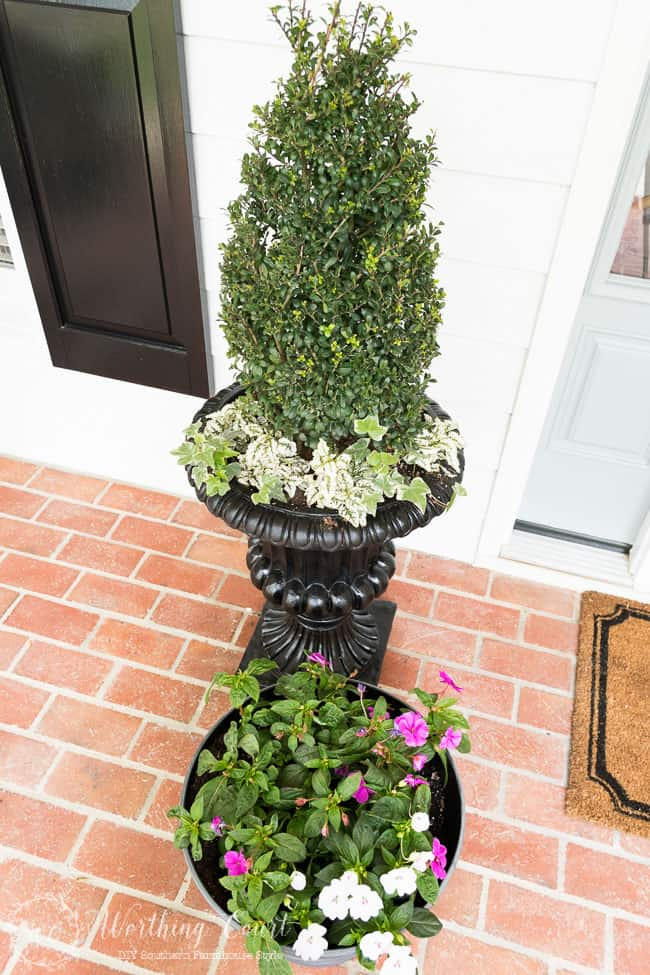 Simple container plantings for a spring farmhouse style front entry