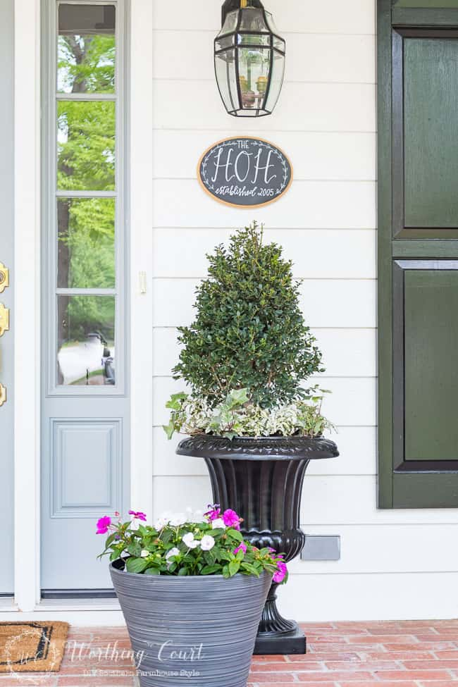 Farmhouse style doesn't have to mean fussy or complicated or having a space filled to the brim with chotchkies. When it comes to outdoor spaces and landscaping, I much prefer clean, groomed lines. Thus my choice of just a few planters that flank my front door. Matching boxwoods in black urns with green and white ivy and polka dot plants are a classic. As summer progresses the ivy will trail down the sides and the polka dot plants will fill out and create and eye catching spot of brightness on our shady front porch.