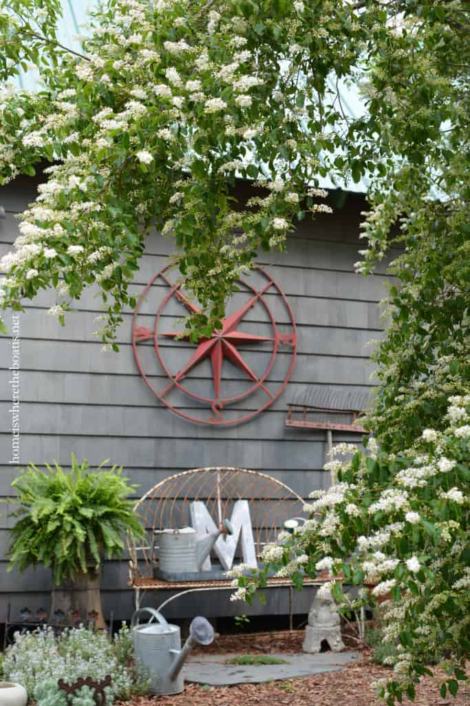 Around The Potting Shed