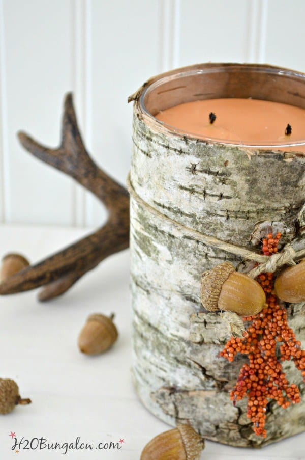 DIY Birch Bark Candle Holder