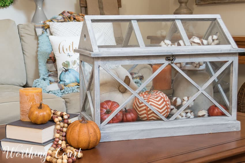 Fall vignette in a terrarium || Worthing Court