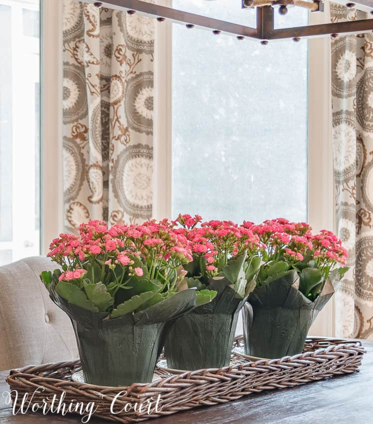 Use potted flowers in a wicker tray for a super simple spring centerpiece || Worthing Court
