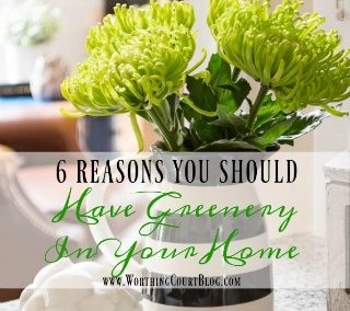 6 Great Reasons To Add Greenery Or Flowers To Your Home