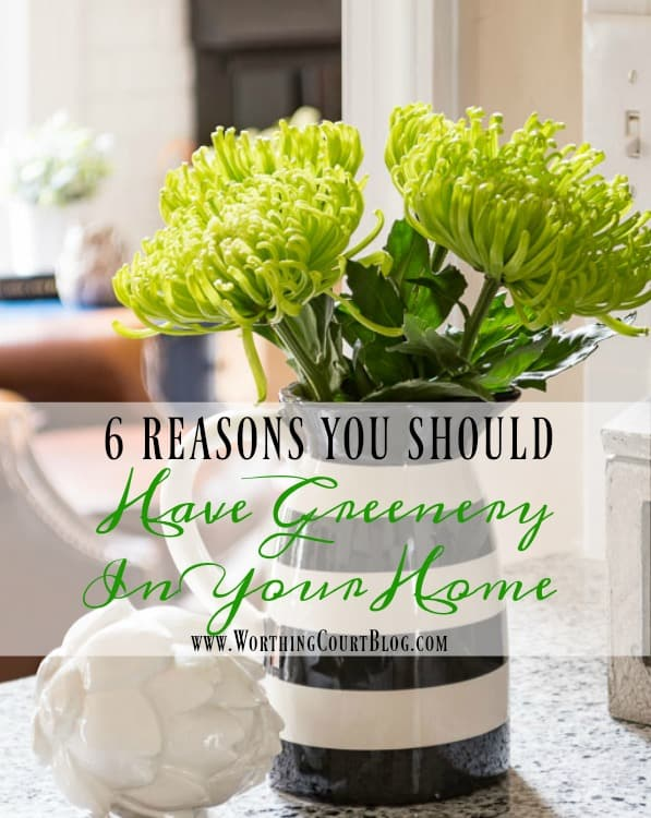 6 Reasons To Add Greenery Or Flowers To Your Home || Worthing Court