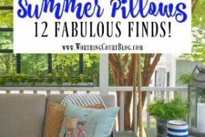 Look What I Found! And Decorating With Summer Pillows