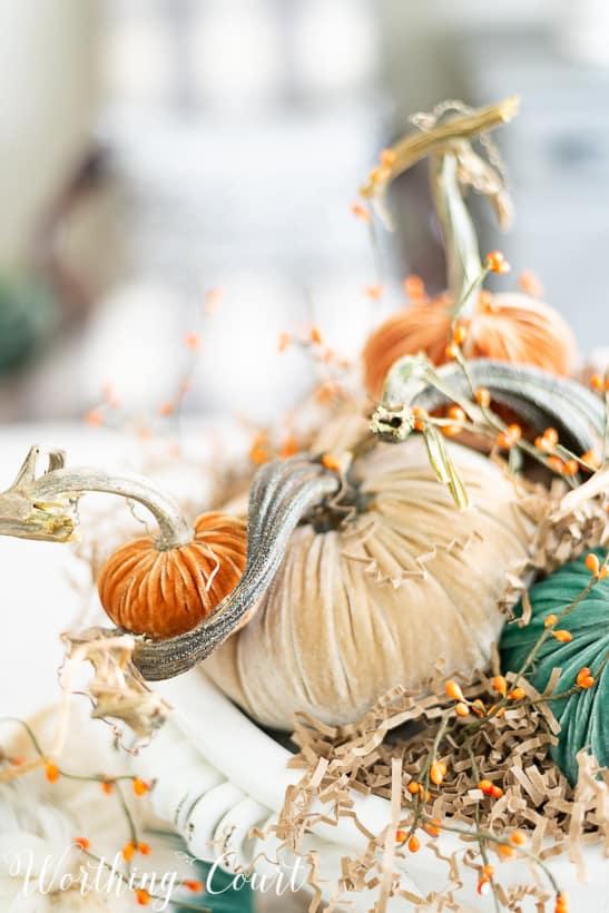 The close up of the mini orange pumpkin.