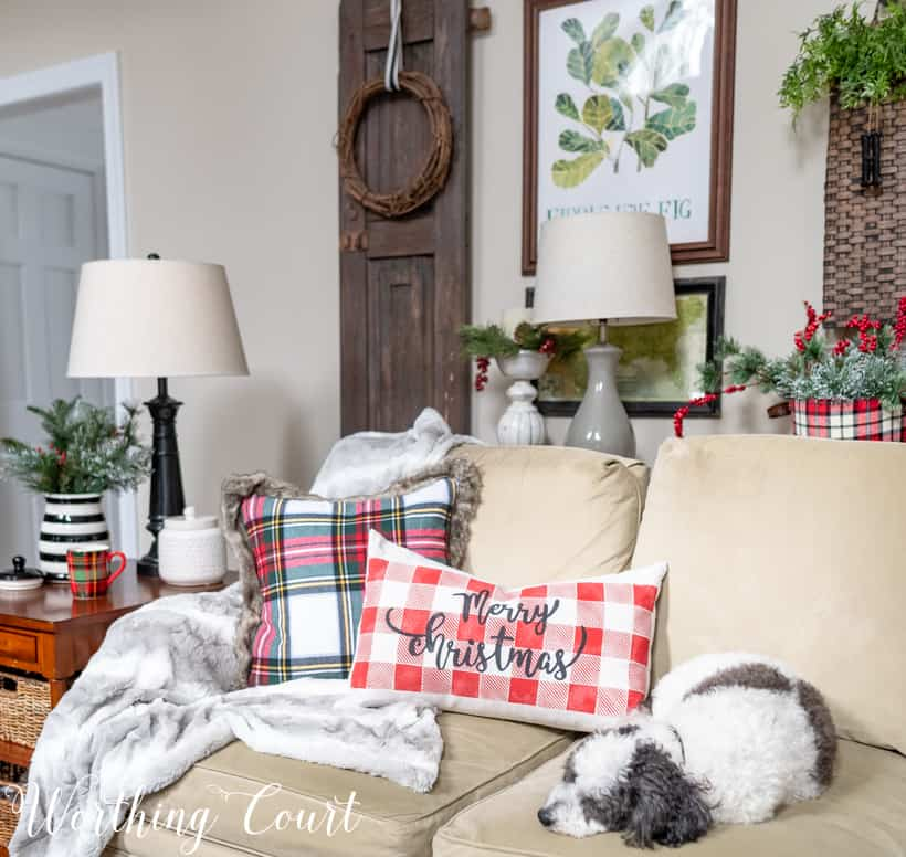 Cute dog on a sofa with Christmas pillows