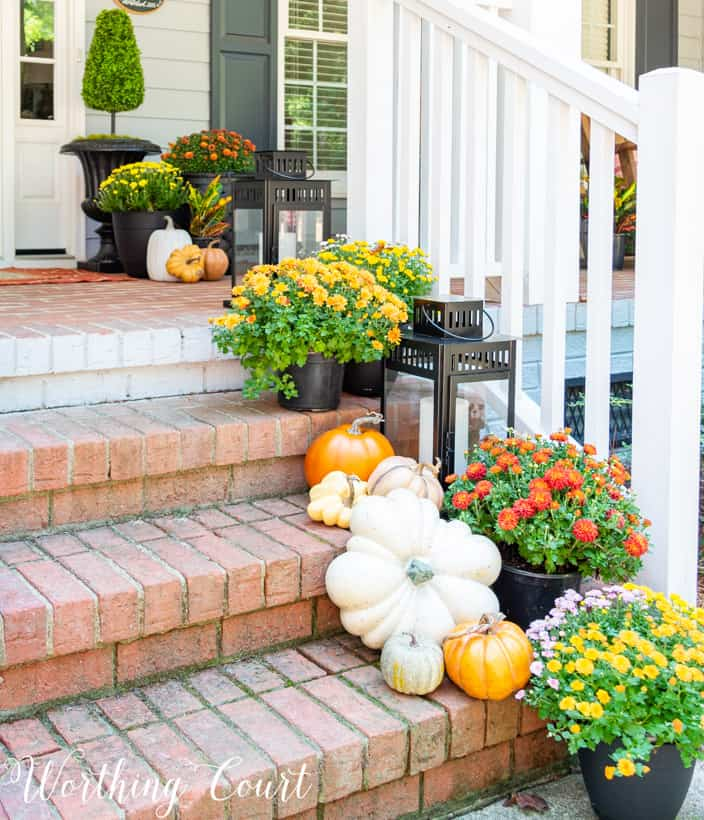 different colors of mums and pumpkins on porch steps