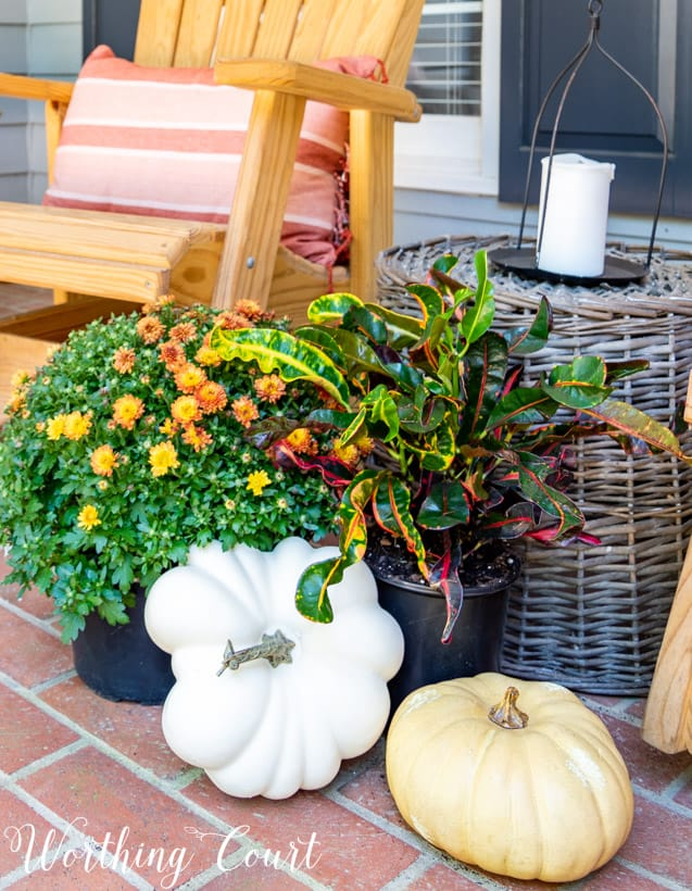 front porch decor ideas grouping of mums and pumpkins for fall