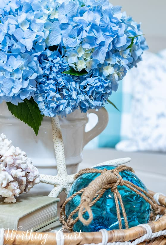 The bright blue hydrangeas in the white vase on the table.