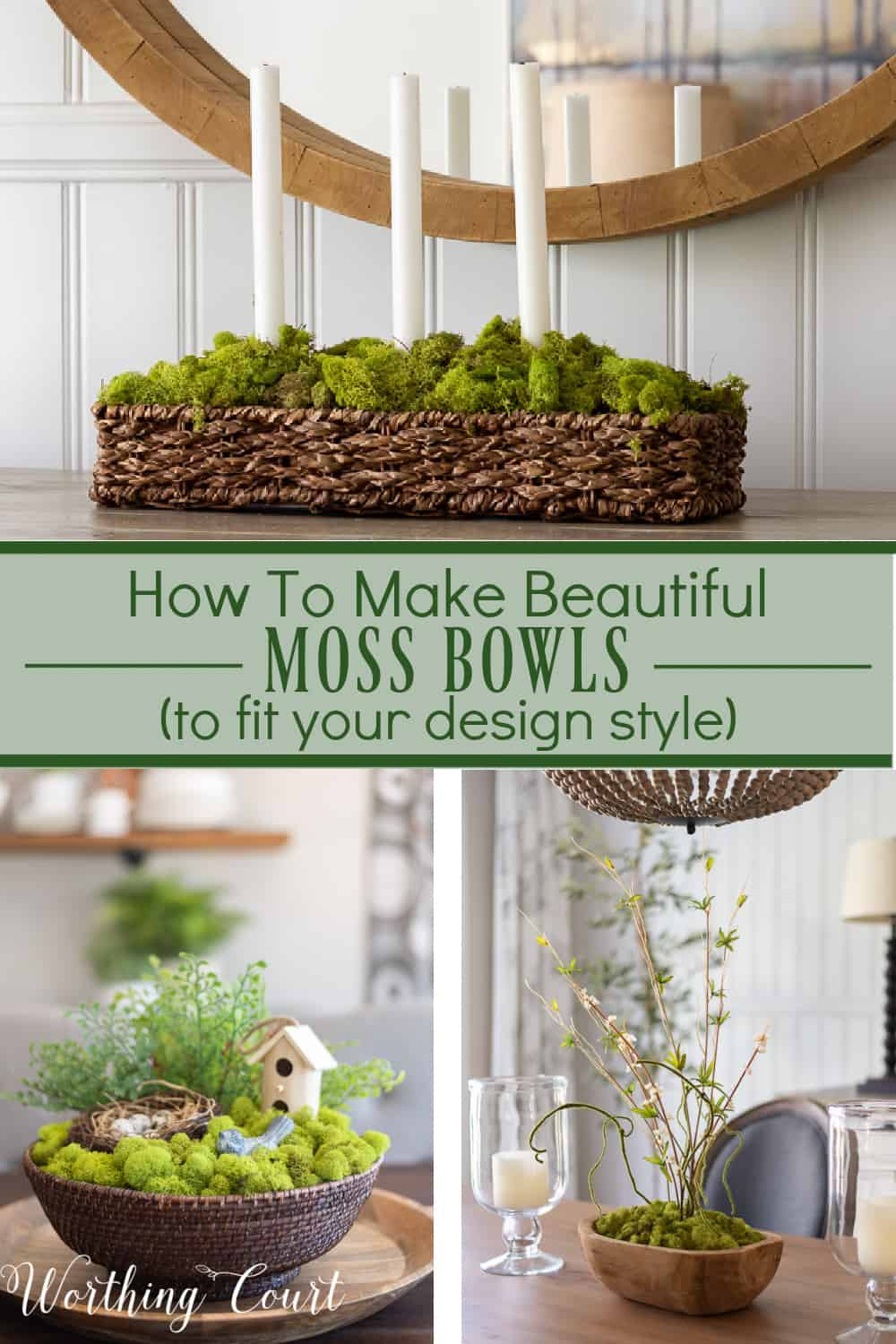 pinterest graphic for blog post on how to make your own moss bowls